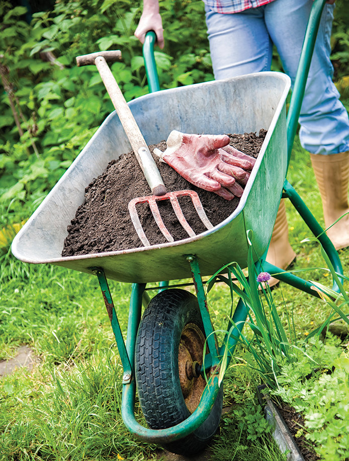 Check your garden tools, such as a wheelbarrow, shovel, etc.